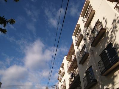 Tukiji_11213