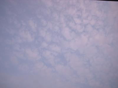 Tukiji_494